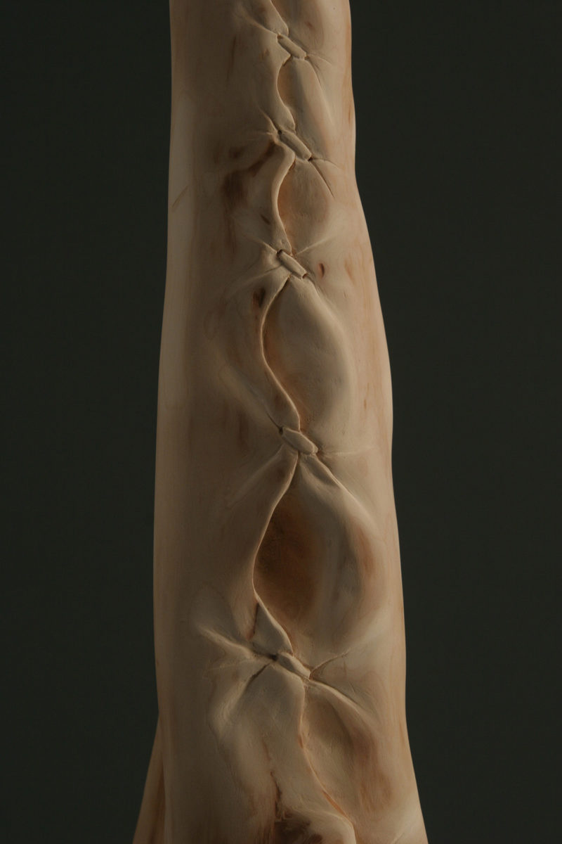 2008-stitches-(detail)